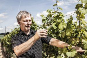 Winzer Klaus Thul im Weinberg mit einem erfrischenden Glas Weißwein